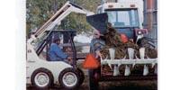 International 4130 skid steer loader preview image